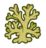 Marine coral stylized vector illustration Royalty Free Stock Photos