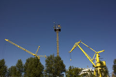 Marine cranes Royalty Free Stock Photography