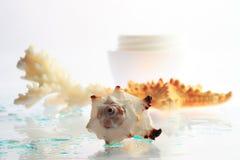 Marine cream. Coral and jars of cream Royalty Free Stock Photos