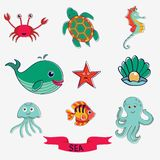 Marine creatures Stock Images