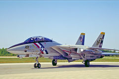 Marine d'Etats-Unis F14 Tomcat photographie stock libre de droits