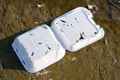 Marine Debris. It shows a white foam food container overturned on the beach with foot prints from a gull near by and small feathers. The small triangle holes in Stock Images