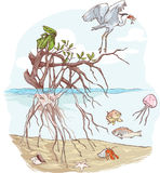 Marine Ecosystem. A vector image illustration (Marine Ecosystem Royalty Free Stock Photography