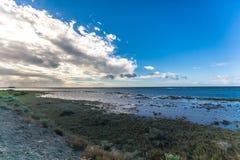 Marine Estuary Stock Images