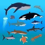 Marine Fauna Set of Aquatic Animals Stock Image