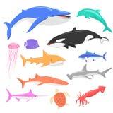 Marine Fauna Set of Aquatic Animals Royalty Free Stock Image