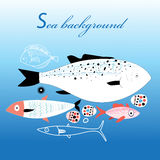 Marine fish background. Graphic different fish on blue sea background Royalty Free Stock Images