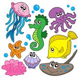 Marine fish collection. Vector illustration Stock Photography