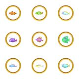Marine fish icons set, cartoon style Royalty Free Stock Photos