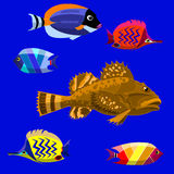 Marine fish. Illustration of a group of marine fish vector illustration