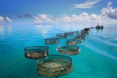 Marine Fishery on turquoise sea Stock Photo