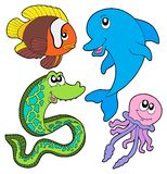 Marine fishes collection Royalty Free Stock Photography