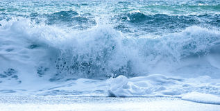 Marine foamy wave. Royalty Free Stock Image