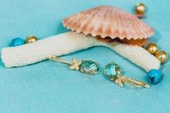 Marine footage. Jewelry earrings, shell,Marine footage Stock Photo