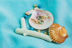Marine footage. Jewelry earrings, shell,Marine footage Royalty Free Stock Images