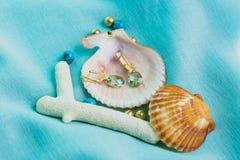 Marine footage. Jewelry earrings, shell,Marine footage Stock Images