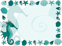 Marine frame. With seahorse, shells and seastars Stock Image