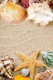 Marine frame with colorful sea shells Stock Photo