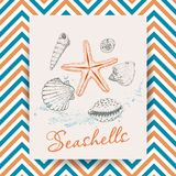 Marine Holidays cards with seashells. Vector illustration for your design stock illustration