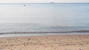 Marine horizont with ship. Marine evening horizont with ship stock video footage
