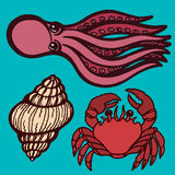 Marine inhabitants. Octopus, crab and shellfish. Isolated objects. Vector Image. Marine inhabitants. Octopus, crab and shellfish. Isolated objects Vector Stock Images
