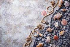 Marine items: sea shells, rope, fishnet Royalty Free Stock Photos