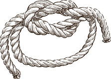 Marine knot. Vector drawing of a rope tied in a marine knot Stock Images