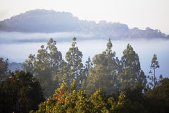 Marine layer surrounds mountains in fog and clouds, Oak View, California, USA Royalty Free Stock Images