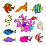 Marine Life 3. An assortment of underwater creatures Royalty Free Stock Photo