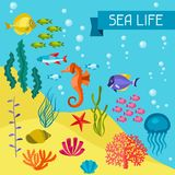 Marine life background design with sea animals Royalty Free Stock Photo