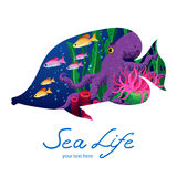 Marine life on background in the form of a fish. Stock Photos
