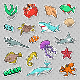 Marine Life Badges, Patches, Stickers with Fish Shark Turtle Octopus. Sea and Ocean Nature Royalty Free Stock Images