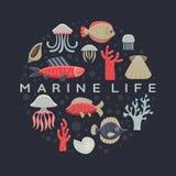 Marine Life Card Fotografia Stock