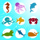Marine Life Cartoon Stock Image