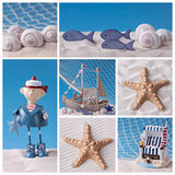 Marine life collage Stock Images
