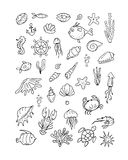 Marine life, collection of sketches for your design Stock Photography