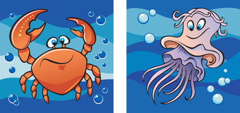 Marine life: crab and jellyfish Royalty Free Stock Image