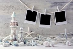 Marine life decoration. And instant photos on a white shabby background Royalty Free Stock Photography