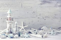 Marine life decoration. On a white shabby background Royalty Free Stock Photo