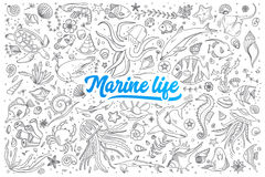 Marine life doodle set with lettering Royalty Free Stock Photography