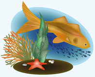 Marine life with golden fish. Vector illustration Royalty Free Stock Images