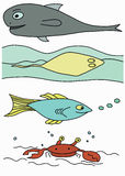 Marine life hand drawing. Set of children or kids colored illustration of fish, crab, sting ray and whale Stock Photo