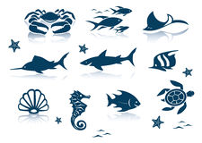 Marine life icon set Stock Image