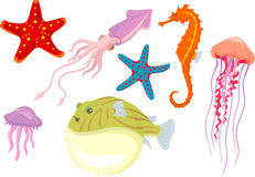 Marine Life Illustration Royalty Free Stock Photo