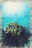 Marine Life-koraalrif onderwater Digitaal Art Impasto Oil Paint vector illustratie