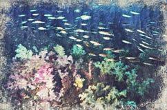 Marine Life-koraalrif onderwater Digitaal Art Impasto Oil Paint stock illustratie
