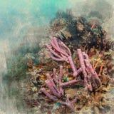 Marine Life-koraalrif onderwaterwaterverf op uitstekende document bedelaars vector illustratie