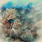 Marine Life-koraalrif onderwaterwaterverf op uitstekende document bedelaars royalty-vrije illustratie