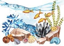 Marine Life Landscape - de oceaan en onderwaterwereld met verschillende inwoners Aquariumconcept voor affiches, T stock illustratie