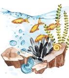 Marine Life Landscape - el océano y el mundo subacuático con diversos habitantes Concepto para los carteles, T del acuario Foto de archivo libre de regalías